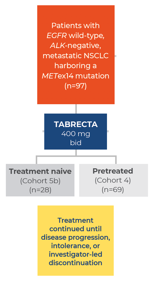 TABRECTA™ (capmatinib) tablets was studied in a multicohort, nonrandomized, open-label Phase II trial, GEOMETRY mono-1